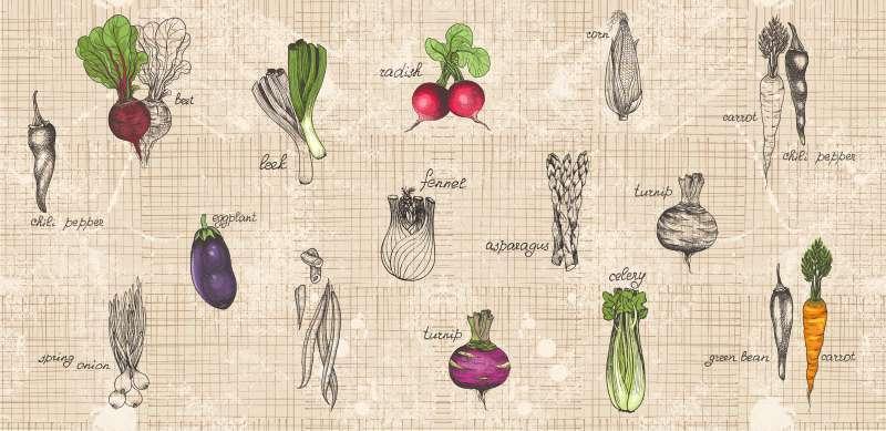 Carta da parati Vegetables