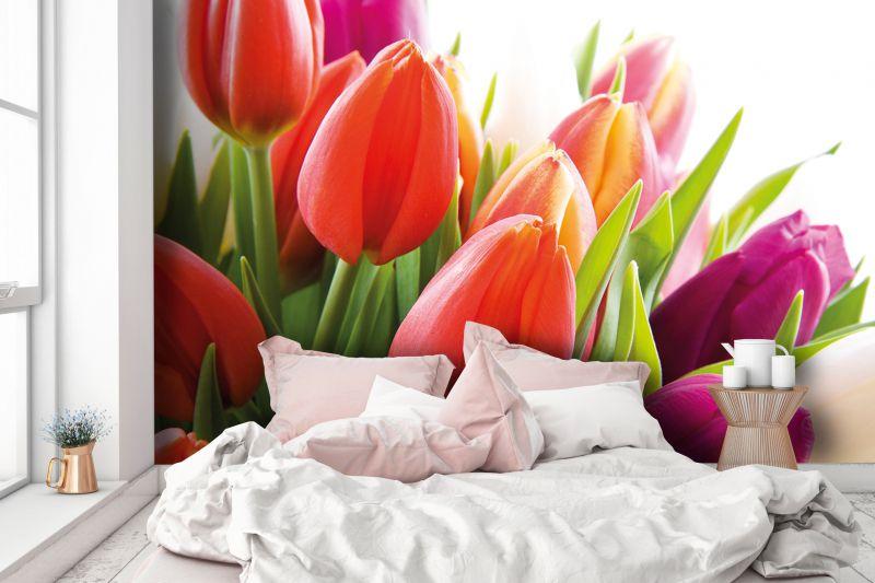 Carta Da Parati Fiori Rosa : Carta da parati fiori della collezione style