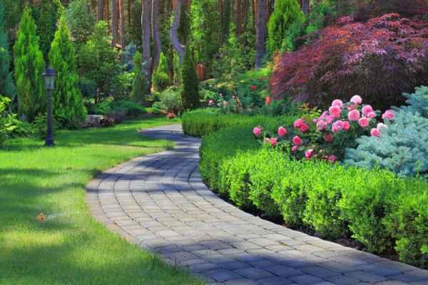 Carta da parati Vialetto giardino