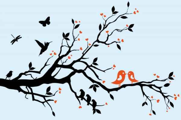 Carta da parati Ramo uccelli