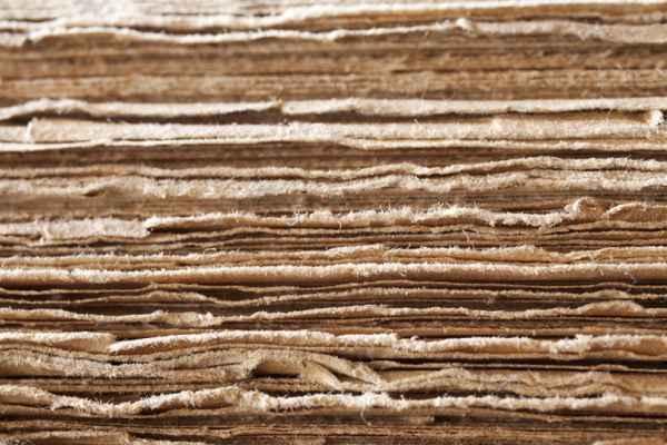 Carta da parati Papiro
