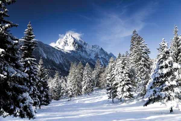 Carta da parati Inverno 1