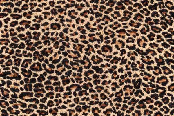 Carta da parati Stoffa Leopardata