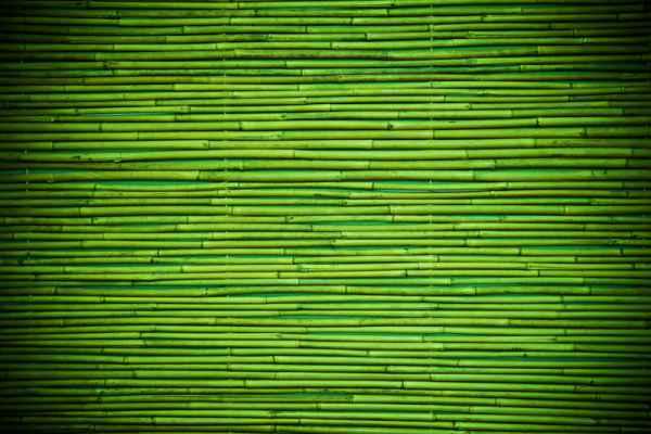 Carta da parati Tappeto bamboo
